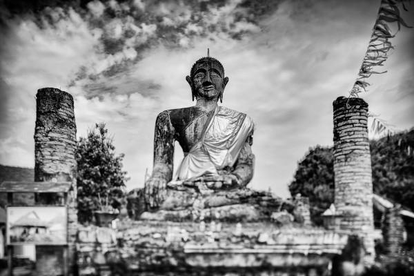 Photo Bombs And Buddha