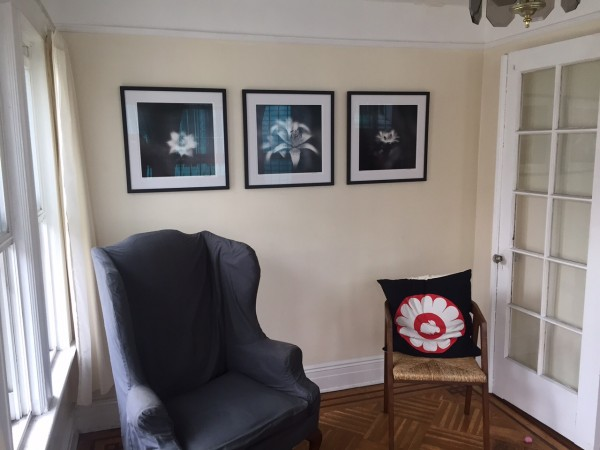 Photo Botanica Obscura in client's home